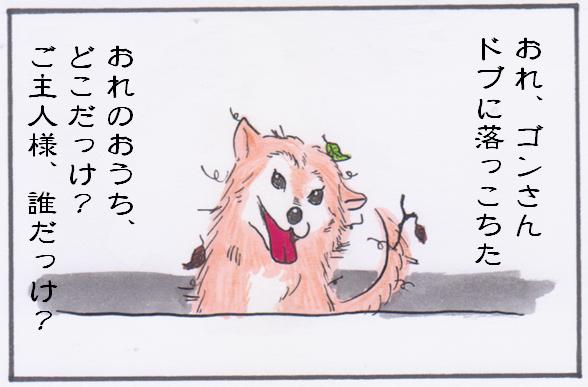 ごんさん1.PNG