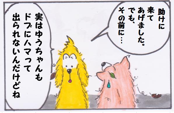 ごんさん4.PNG
