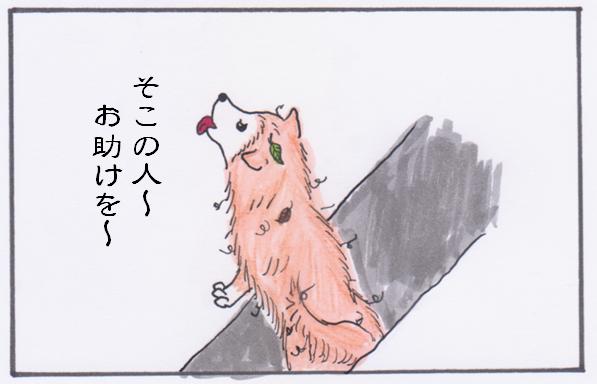 ごんさん2.PNG
