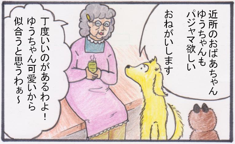 タヌキそのもの柄①.PNG